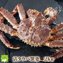 【送料無料】超特大! 本タラバ蟹(キングクラブ)オス 2kg(1尾) 『ボイル・活 選択可能』