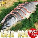 北海道産 新巻鮭 [約1.5kg] 【送料無料】【10P03...