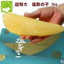 超特大 塩数の子 1kg 送料無料 お歳暮 ギフト対応可能 ラッキーシール対応