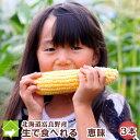 生で食べれるトウモロコシ 北海道富良野産 恵味(めぐみ) 3本入り