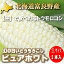 【幻の白いとうもろこし】北海道富良野産 ピュアホワイト5本【10P03Dec16】