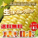 【生で食べれます!】北海道富良野産 フルーツ とうもころこし...