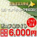 【送料無料】北海道富良野産 激甘トウモロコシ ピュアホワイト 20本【05P09Jul16】