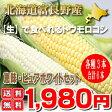 北海道富良野産 ピュアホワイト3本・恵味(めぐみ)3本 スイートトウモロコシ 福袋 【送料無料】【05P09Jul16】