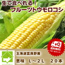 【生】で食べれる!北海道富良野産 フルーツとうもこ