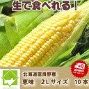 【平成30年発送】生で食べれる!北海道富...