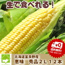 北海道富良野産 とうもろこし 恵味 秀品 2L 12本 【送料無料】【05P09Jul16】