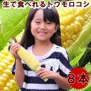 とうもろこし 北海道富良野産 フルーツトウモロコシ 恵味 Lサイズ 8本入 送料無料 別途送料が発生する地域あり