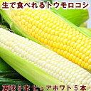 北海道富良野産2色の とうもろこし セット ピュアホワイト5...