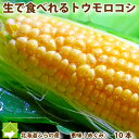 とうもこし 生で食べられる 北海道 富良野産 恵味 2Lサイ...