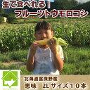 【平成30年発送】北海道富良野産 フルーツ とうもころこし ...