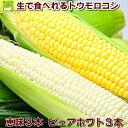 北海道富良野産 ピュアホワイト3本・恵味(めぐみ)3本 スイ...