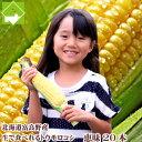 生で食べれるとうもろこし 北海道富良野産 フルーツとうもころ...
