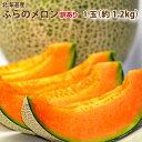 北海道富良野産 訳あり(ワケアリ) 赤肉メロン(めろん)  1.2kg 1玉【10P03Dec16】