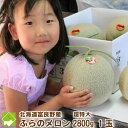 北海道富良野産 赤肉メロン 超特大サイズ 1玉(2800g以上)【送料無料】【お中元ギフト】
