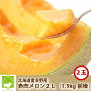 メロン 北海道富良野産 赤肉メロン 2Lサイズ 2玉入り【送...
