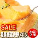 メロン 北海道富良野産 最高級 赤肉メロン 1.2キロ以上 2玉入り【送料無料】【10P03Dec16】
