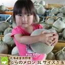 メロン 北海道富良野産 赤肉メロン 超特大3Lサイズ以上(2.5kg以上) 1玉入り 【送料無料】【お中元ギフト】