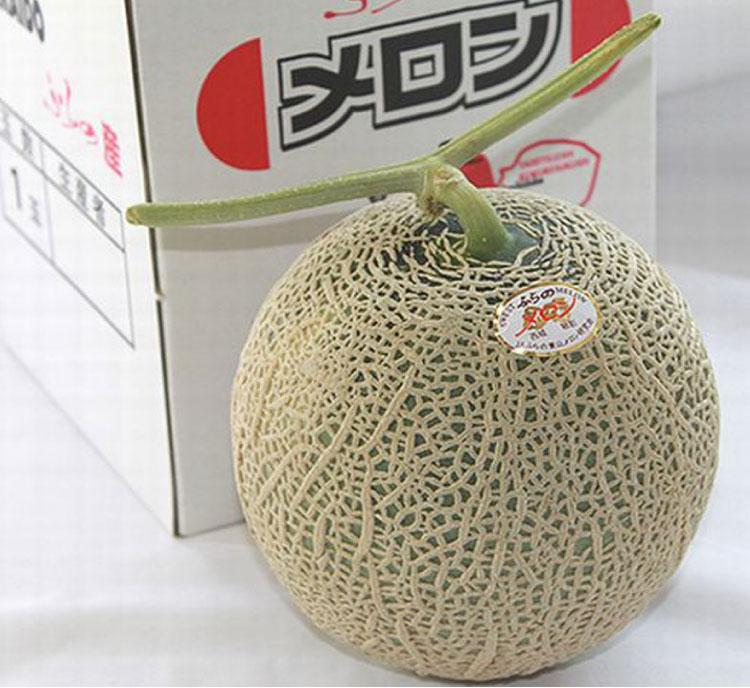 北海道富良野産メロン 最高級 赤肉メロン 1.5キロ以上 1玉【送料無料】【DEAL】