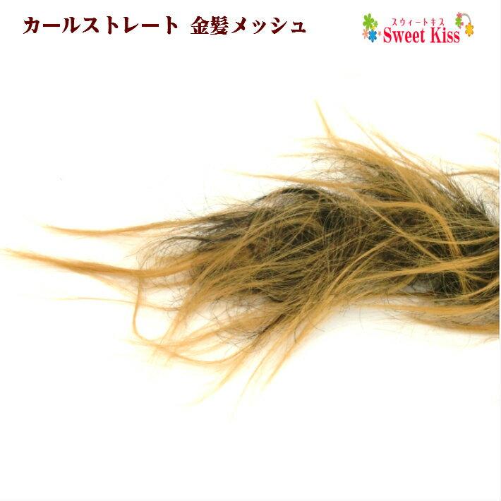 カールストレート 金髪メッシュ (1コ)   ウ...の商品画像