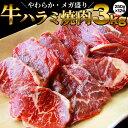 ショッピングホットプレート 牛 ハラミ 焼肉(サガリ)3kg(250g×12P)牛肉 メガ盛り バーベキュー用 美味しい ホットプレート 焼肉 (*当日発送対象) 赤身 贅沢 BBQ やきにく おトク お徳用 送料無料 アメリカ産 あす楽 肉 通販 お取り寄せ グルメ