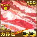 Karubi_fuji500_icon