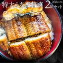 うなぎ蒲焼 2本入り(200g×2)たれ・山椒付き 鰻 かば焼き 土用 丑の日 湯煎 レンチン レン