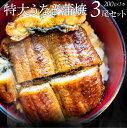 うなぎ 蒲焼 ウナギ 3本入り(200g×3)たれ・山椒付き 鰻 かば焼き 土用 丑の日 湯煎 レン