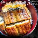 うなぎ 蒲焼 ウナギ 5本入り(200g×5)たれ・山椒付き 鰻 かば焼き 土用 丑の日 湯煎 レン