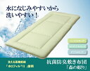 敷き布団 セミダブルロング 寝具 無地 ヒバエッセンス使用 『i森の眠り』 グリーン 120×210cm