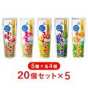 【ゴールドパック】【5箱】 常温 国産ジュース5種アソートセ...