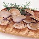 天然はまぐり(殻付) 500g(約20〜25個入)(冷凍食品...