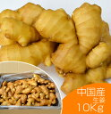【食用】中国産 黄金生姜 10kg(近江生姜 黄色)【生鮮青果/しょうが/効能/生姜茶/