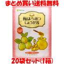 生姜湯 マルシマ 梅はちみつしょうが湯 48g(12g×4包)×20袋セット(1箱)まとめ買い送料無料