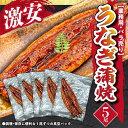 ショッピングうなぎ 【業務用・ばら売り】うなぎ蒲焼5尾
