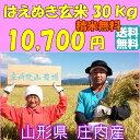 【送料無料】【29年度産】【30kg】はえぬき 1等米 山形...