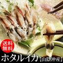 【送料無料】ホタルイカ[冷凍] 1kgセット(500g×2パック入)【2セットご購入ごとに1セットプ