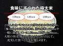 すばらしい 蜆(しじみ)特大 1kg
