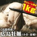 調理簡単♪鍋にフライに最適!調理簡単♪ジャンボ広島牡蠣(かき)[冷凍] 1kgパック【送料無料】