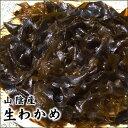 【スピード出荷】【鳥取県産】天然ワカメ[生] 500gセット(お味噌汁・サラダ♪天日干しで保存もおススメ)