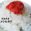 【30年産】新米【鳥取県産】極太米「コシヒカリ」(5kg)[送料無料][常温]