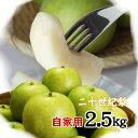 二十世紀梨 【自家用】2.5kgセット(6-9玉入)【...