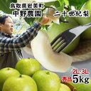 【予約!遅め9月10日頃〜収穫】中野農園【二十世紀梨】5kg...