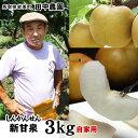 田中農園【新甘泉(しんかんせん)】自家用(訳あり) 3kg(...