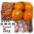 花御所柿【進物用】(L-4L混じり)5kg〔送料無料〕〔鳥取県特産品〕[常温]【収穫があり次第出荷】