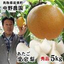 中野農園【あたご梨】5kgセット(秀品進物用:5-7玉入り)...