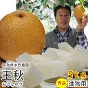 中野農園【王秋梨】5kgセット(秀品進物用:7-12玉入り)...