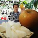 中野農園【新雪梨】5kgセット(秀品進物用:5-7玉入り)【送料無料】[常温]鳥取県産[農家指定商品]