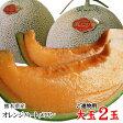 送料無料 オレンジハートメロン【大玉3L-5L】2玉セット【進物用】熊本産〔希少な新品種〕[常温]【5月中旬以降収穫があり次第出荷】
