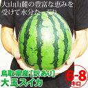 送料無料![訳あり]大玉スイカ(1玉6-8kg程度